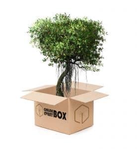 Bastelchallenge Online Event Box Klimaschutz